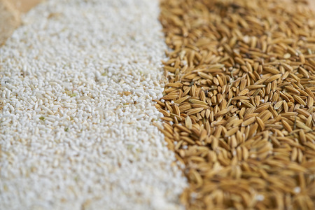 rice for background Reklamní fotografie