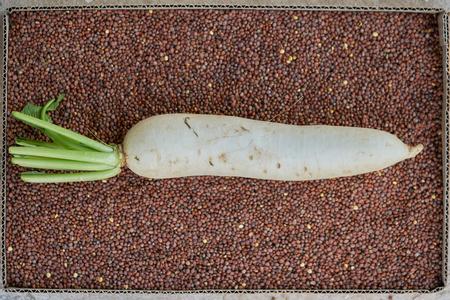 Asian white radish on the seed box.