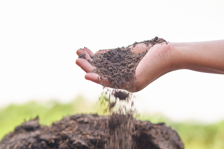 soil in woman hand . love the earth concept