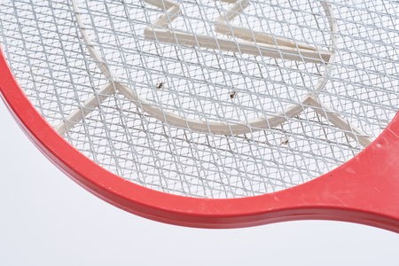 Electric Fly Swatter Mosquito Pet Insect Killer Bug Zapper Racket Battery Bat