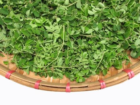 moringa: Horse radish leaf in the wicker basket