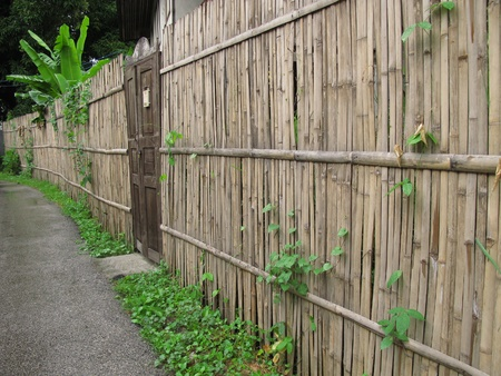 Old wood door and bamboo fence in rural area Stock Photo