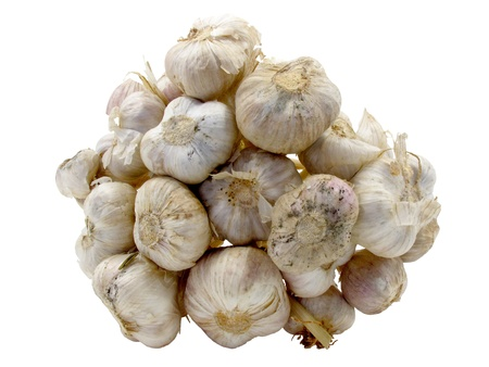 Under bunch of garlic on white background with clipping path  Stock Photo - 12379520