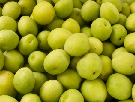Heap group of many fresh green plum photo