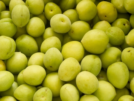 Heap group of many fresh green plum