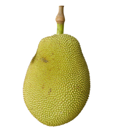 Jack fruit on white background isolated with clipping path Stock Photo
