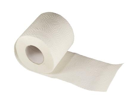 papel higienico: Papel higiénico blanco sobre fondo blanco