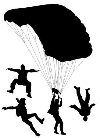caida libre: Paracaidismo Silueta sobre fondo blanco