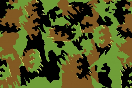 Military Camuoflage pattern