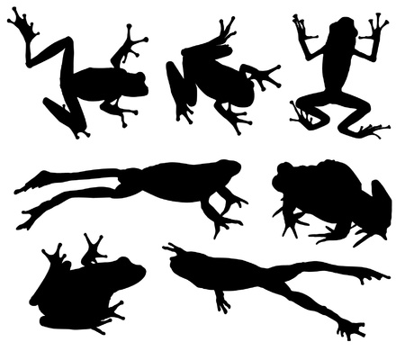 dart frog: Frog Silhouette on white background Illustration
