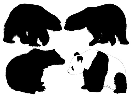 snarling: Bear Silhouette on white background