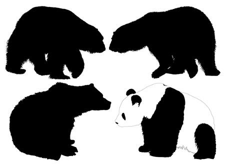 bear silhouette: Orso Silhouette su sfondo bianco