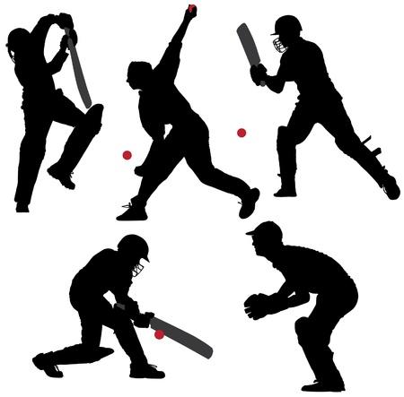 cricket: Cricket Sport Silhouette su sfondo bianco