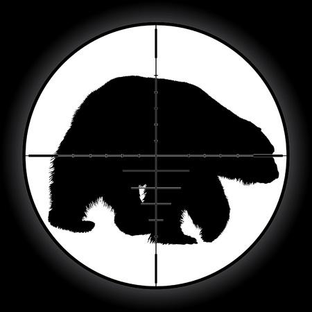 telescopic: Hunter mira mira telesc�pica apuntando oso Vectores