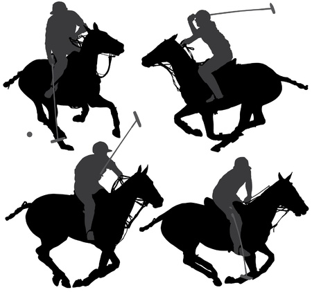 horses in field: Polo Player Silhouette on white background