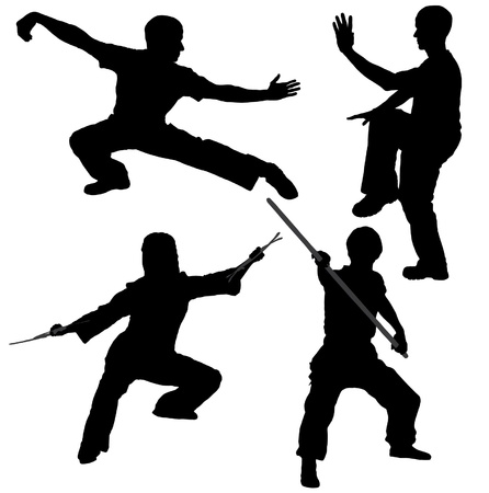 kwon: Kung Fu Fighter Silhouette on white background Illustration