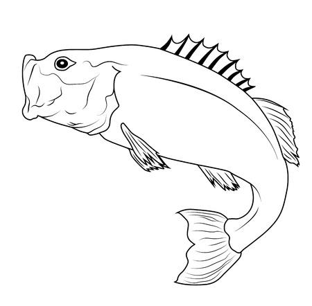 Jumping Bass Pesce Contorno Illustrazione Vettoriali