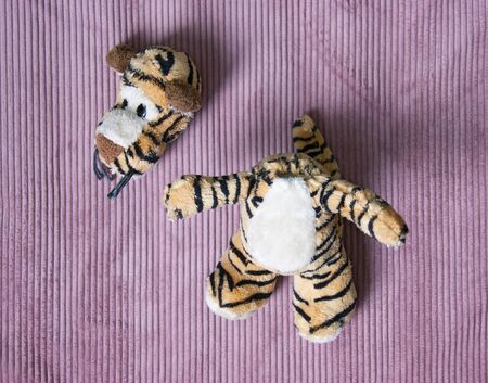 Plush tigger with a torn head. Torn toy.