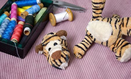 Plush tigger with a torn head. Sewing kit. Torn toy. Archivio Fotografico