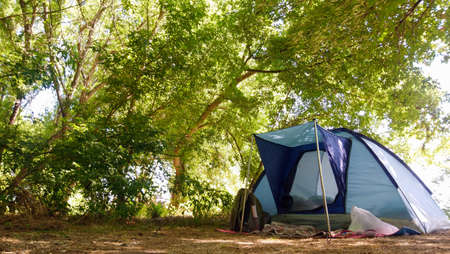 Small camping in a green forest. A blue tent. Travel concept, hiking, nature tour. 免版税图像