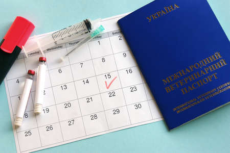 Blue Ukraine veterinary passport, syringe and ampoule with liquid on a light blue background. Marked date on the calendar, concept of annual vaccinations for pets. Top view.