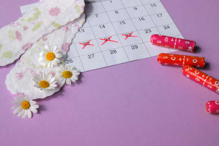 Menstrual pads and tampons on menstruation period calendar with chamomiles on pink background. The concept of female health, personal hygiene during critical days.
