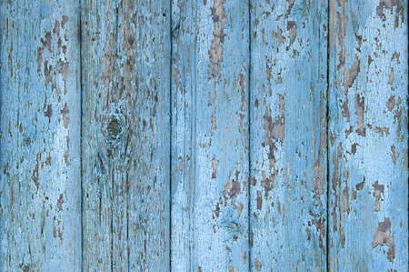 Crackled paint on old light blue wood planks. Abstract photo background