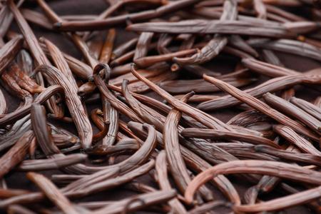 bean pod: Vanilla dry fruit (vanilla bean, pod)  in the curing ferments process for grading vanilla flavor. Stock Photo
