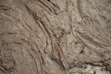 fetid: Liquid dirt, mud