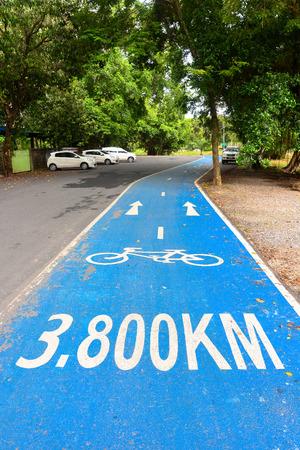 bike lane: bike lane in public park
