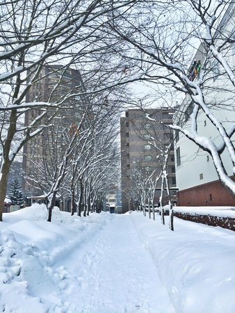 snowing: Snowing in Sapporo, Japan Stock Photo