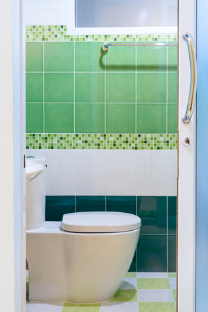 Toilet with green tile view from outside photo