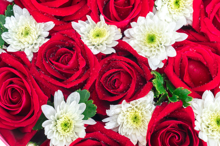 valentine s: Roses and carnations. gift for valentine s day