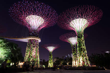 show garden: SINGAPORE - JANUARY 31: Lighting show on super tree groove at Garden by the Bay January .31, 2014 in Singapore. Spanning 101 hectares of reclaimed land in central Singapore, adjacent to Marina Reservoir.