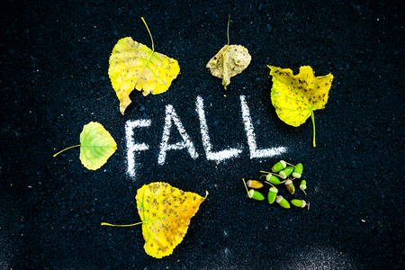 the inscription in white chalk on the black asphalt fall around autumn yellow faded leaves and acorns with oak
