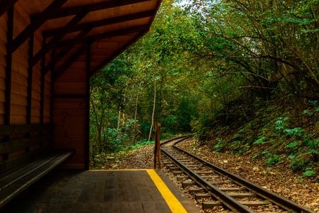 wooden stop in autumn forest for train railway