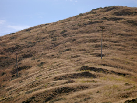 Dry grass on hillside with electric poles Imagens