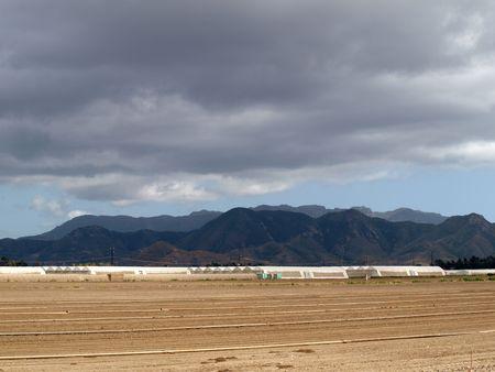 landscape view of plant nurseries in fields