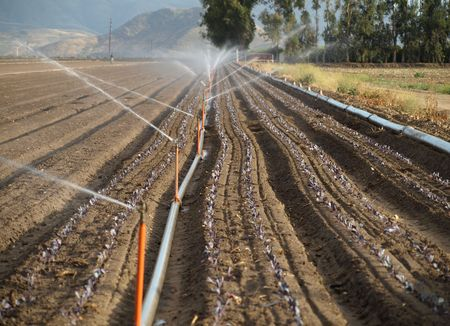 row of water sprinklers in field Imagens