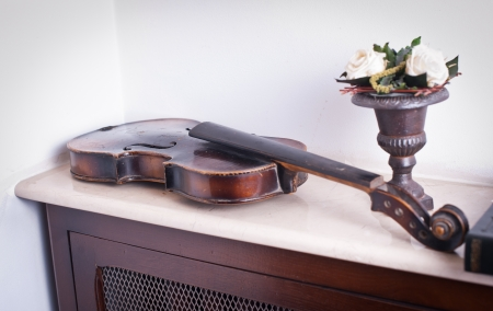 necking: old violin near a vase with roses