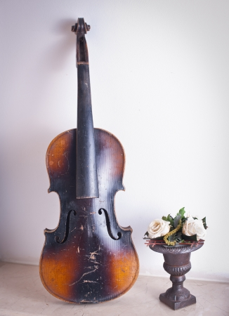 necking: old violin leaning against the wall near a vase with roses