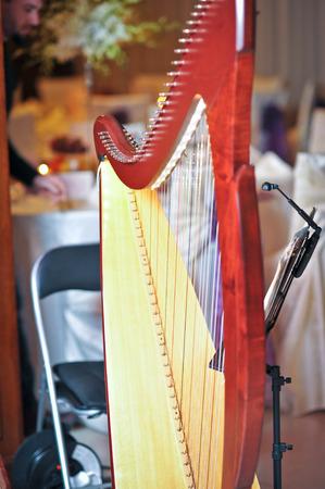 resonator: Classic harp in restaurant  Stock Photo