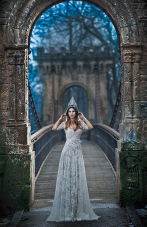 Lovely young lady wearing elegant white dress and silver tiara posing on ancient bridge, ice princess concept. Pretty brunette girl in long wedding dress posing in winter scenery, gothic ice queen Standard-Bild