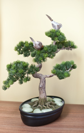 bonsai tree: A small bonsai tree in black ceramic pot on wooden table, on yellow background. Bonsai tree with small swallows on branches and pearly white rocks around his stem