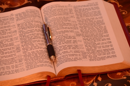 redemption of the world: Holy Bible