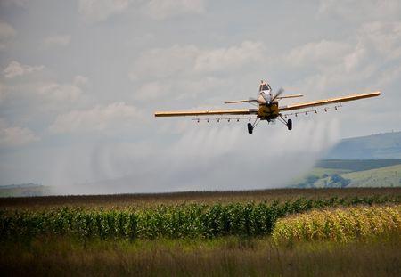 fungicide: Crop sprayer sparaying corn