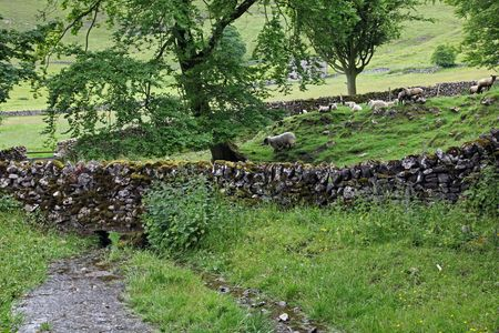 In the hills of England dry stone walls are made to divide fields as no hedges will grow in the shallow  soil. Stock Photo - 5063448