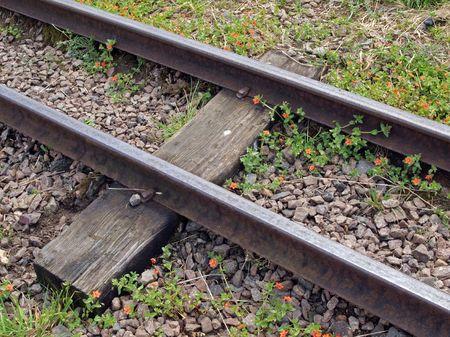 country park: Pista de un ferrocarril en miniatura que lleva a los visitantes en torno a un parque de pa�s
