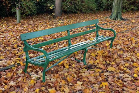 Park bench in the autumn Stock Photo