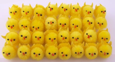 Decorative chicks used to decorate easter gifts.